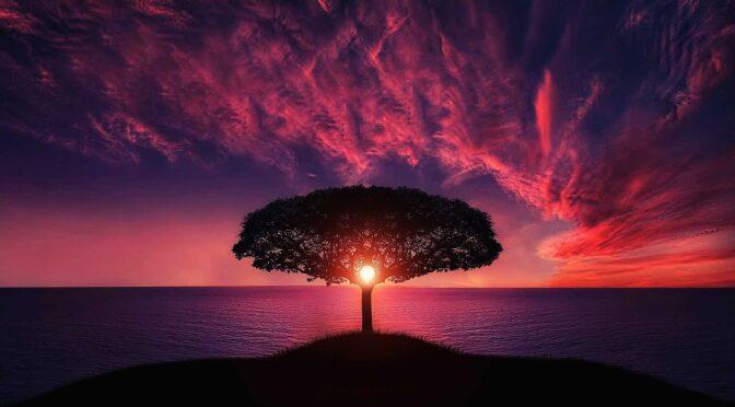 Psyche, świadomość, Nieświadomość i… dusza według Carla GUSTAVA JUNGA
